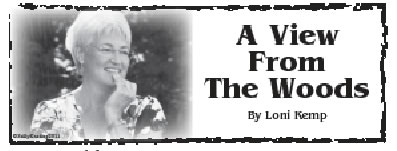 Fillmore County Journal - A View From The Woods - Loni Kemp