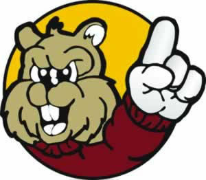 Fillmore County Journal - Chatfield Gophers