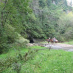 View Forestville/Mystery Cave State Park by horseback
