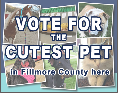 Fillmore County Journal - Cute Pet Contest