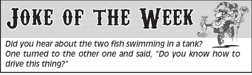 Fillmore County Journal - Joke of the Week 7.6.20