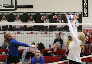 Spring Grove volleyball, Fillmore County Journal