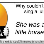 Fillmore County Journal- Joke of the Week